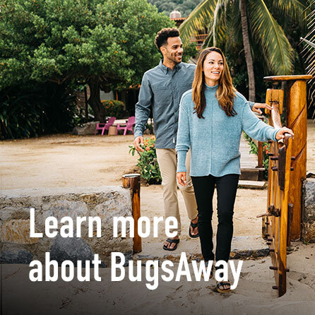Learn more about BugsAway